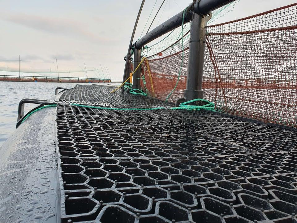 Mørenot Aquaculture_Hvalpsund Ringen_Gangbane 02